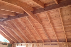 Timbers-frame2